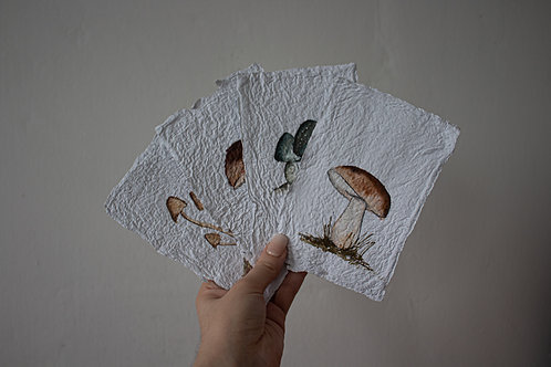 Watercolor Mushroom Stationary