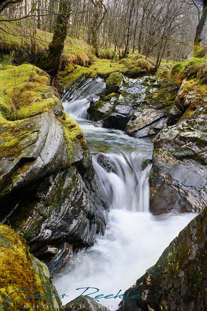 Stream on Glen Orchy