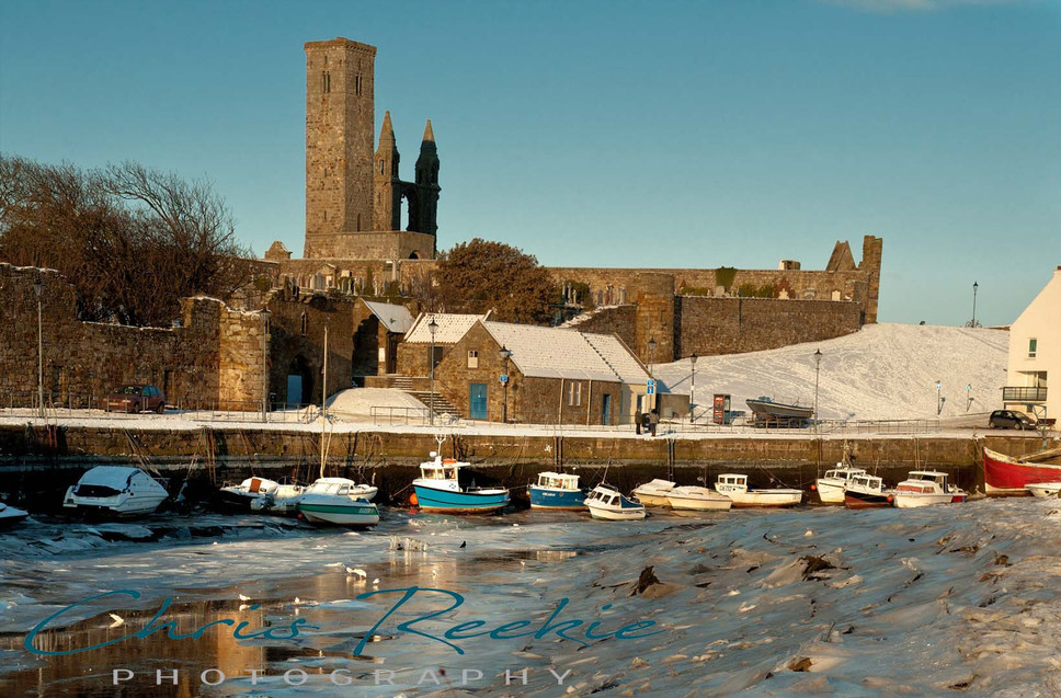Winter in the harbour
