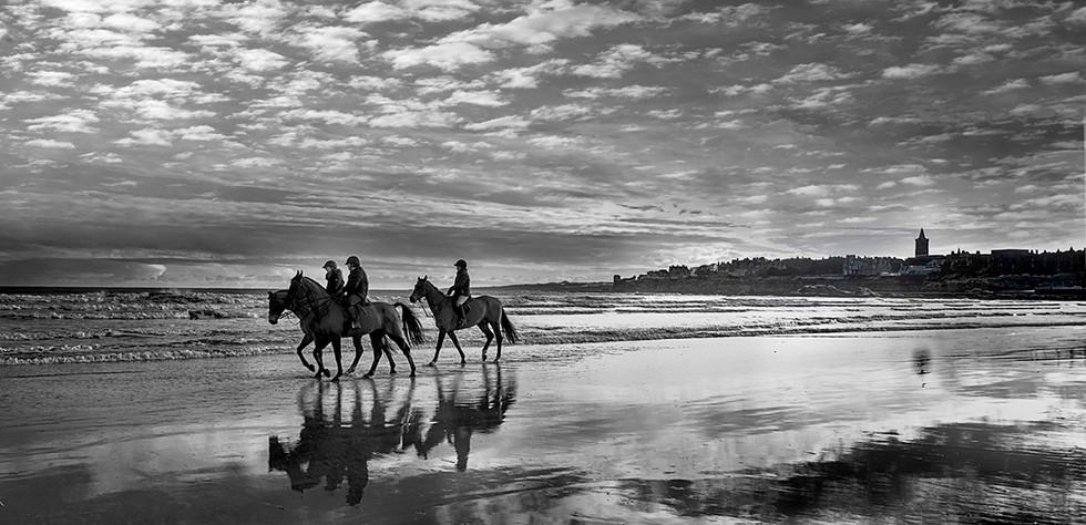 Race horse training on West Sands