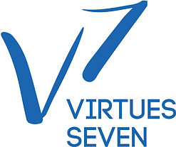 V7 Martial Arts logo concept, designed by Hannah Kroese, HK Creative, graphic designer in Moscow Idaho