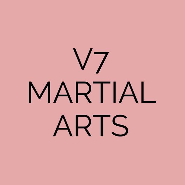 V7 Martial Arts