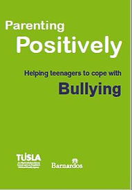 Parenting Positively - Helping teenagers cope with BULLYING.JPG