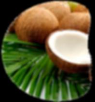Limonada-de-coco.png