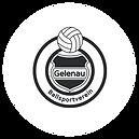 BSV Gelenau.png