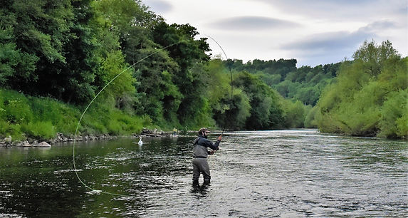 RJC Fly Rods action