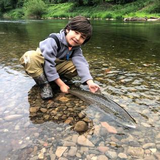 RIver Wye Salmon