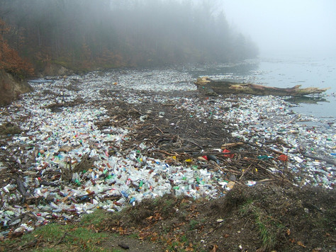 Our Plastic Oceans