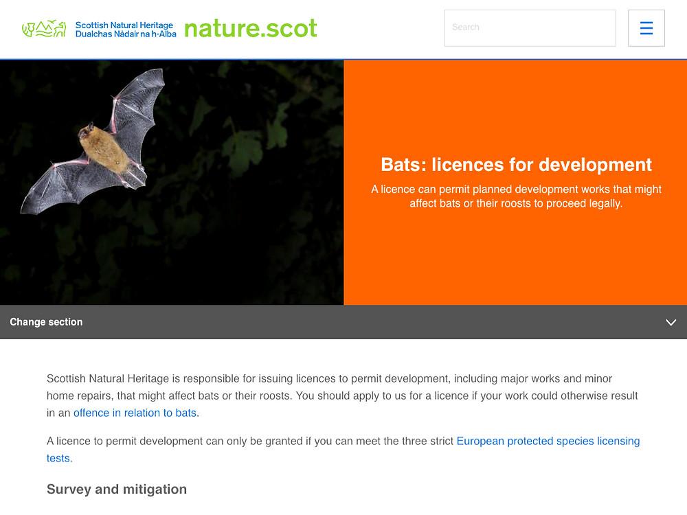 SNH: bat licences for development