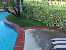 Artificial Turf Blends Safe For Pets