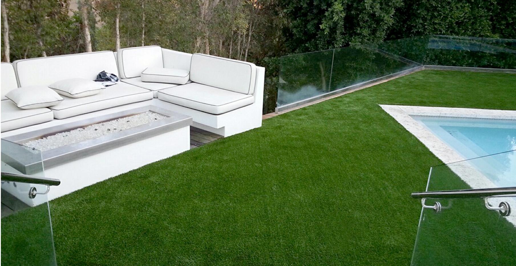 lounge_patiograss.jpg