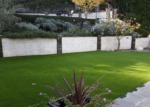 BACKYARD_lawn.jpg