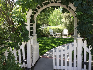 Synthetic Turf for shaded yard
