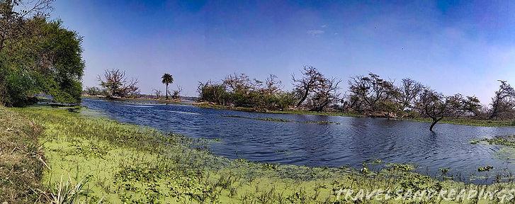 Keoladeo National Park, Bharatpur, Rajasthan.