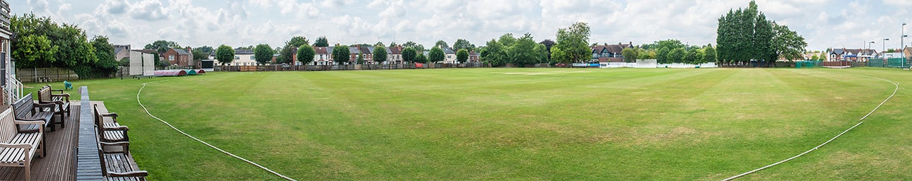 cricket field_edited.jpg