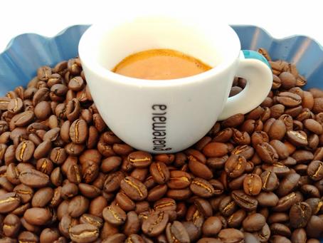 𝗲𝘁𝗶𝗼𝗽𝗶𝗮 𝘀𝗶𝗱𝗮𝗺𝗼 𝗴𝘂𝗷𝗶 𝗴𝗿.𝟮 | espresso senza fretta