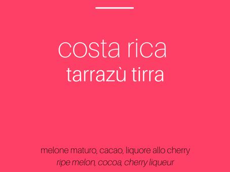 𝗰𝗼𝘀𝘁𝗮 𝗿𝗶𝗰𝗮 𝘁𝗮𝗿𝗿𝗮𝘇𝘂̀ 𝘁𝗶𝗿𝗿𝗮 specialty coffee | il nuovo arrivato