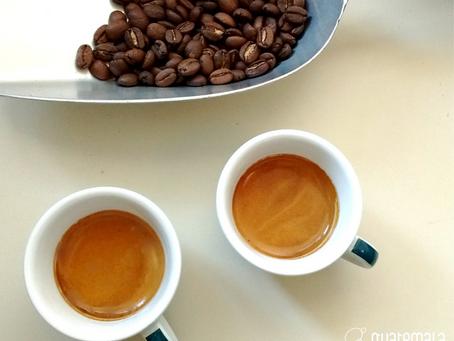 𝗰𝗲𝗻𝘁𝗼𝗽𝗲𝗿𝗰𝗲𝗻𝘁𝗼𝗮𝗿𝗮𝗯𝗶𝗰𝗮 | miscela di caffè