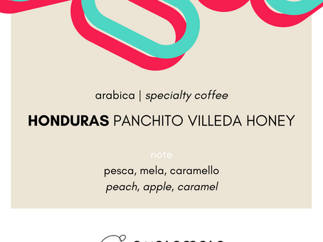 Honduras Panchito Villeda Honey | specialty coffee