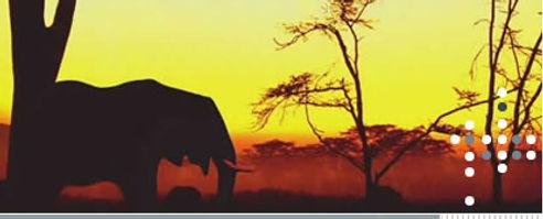 projafrica01.jpg