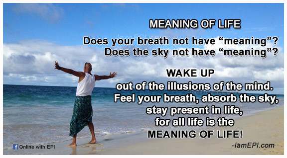 2-MEANING-OF-LIFE.jpg