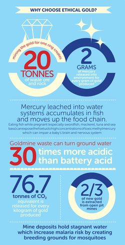 Green Ideas – Info Graphic