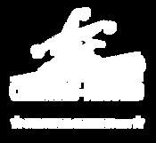 vibe test Logo SQP LAURIERS CompetitionI