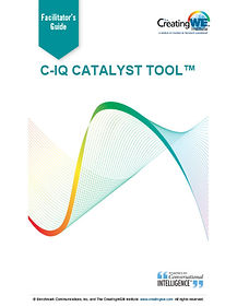 C-IQ-Catalyst-Tool-2019w - Copy.jpg