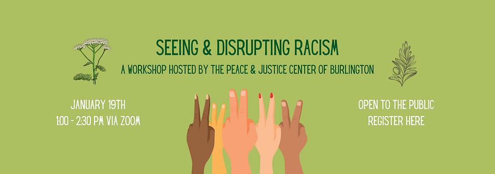 Seeing & Disrupting Racism-2.png