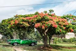 Descapotable Cuba