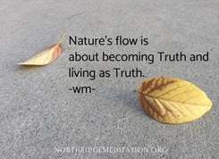 nature's flow is about becoming truth an