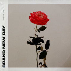 Back On Earth - Brand New Day EP [2020]