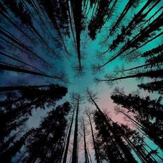 Edwrd Jacks - Gravity [2020]