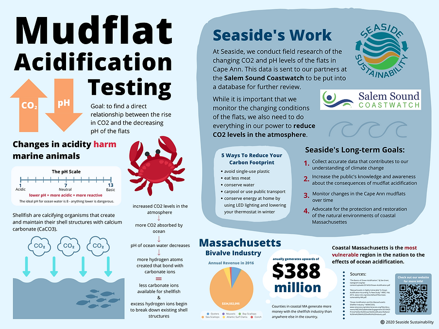 Final Mudflat Acidification Infographic.