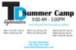 TDSummerCamp.jpg