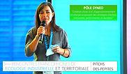 pitch-POLE-SYNEO-16-9.jpg