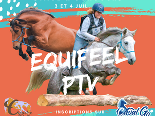Stage & concours d'Equifeel/PTV