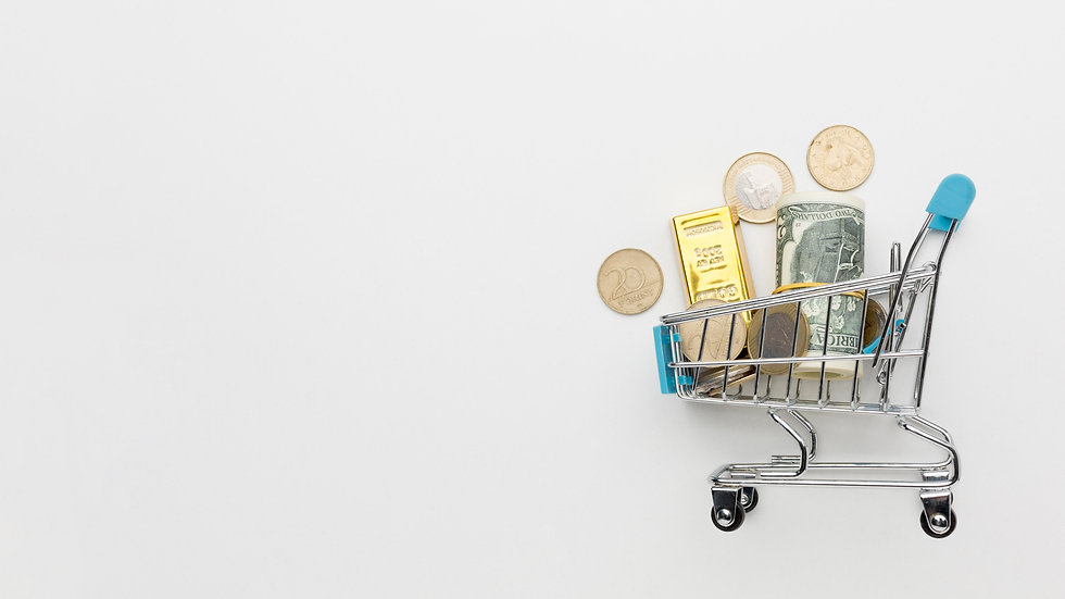 shopping-cart-filled-with-money-copy-spa