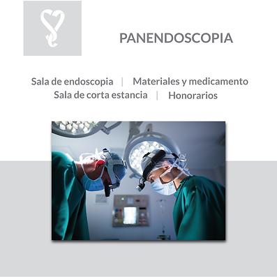 panendoscopia.png