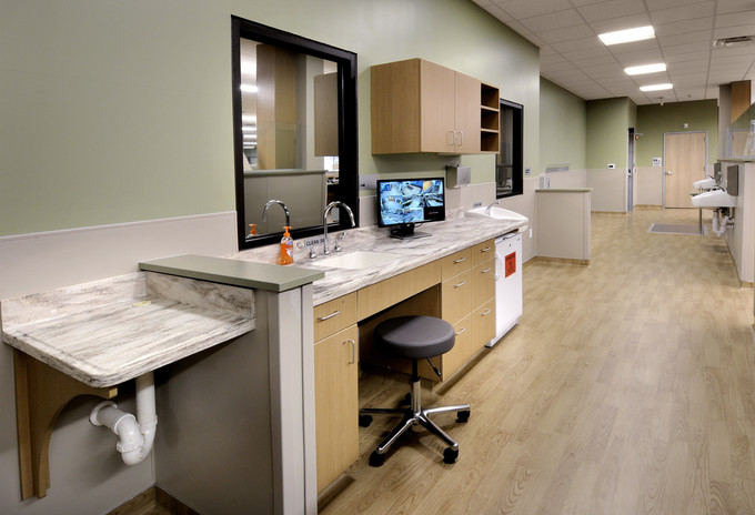Tampa Bay Healthcare Clinic