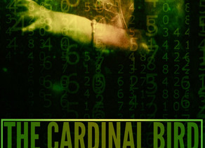 Excerpt from The Cardinal Bird