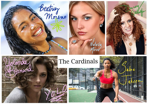 The Cardinals Mia Smantz The Cardinal Series Reverse Harem Books Callie Jensen Beatriz Moreno Natasia Mirov Darcy Gallagher Yolonda Bernard Sabra Jaheem Mia Smantz