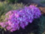 терра2016 красноярск 506.jpg