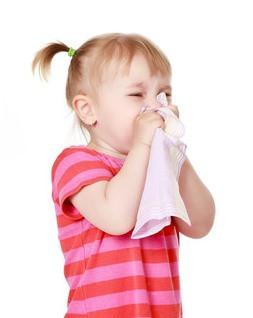 Gripe Dra Cleonir