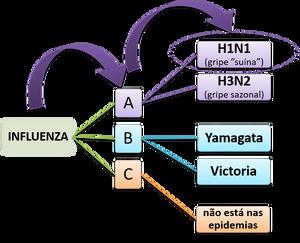Vírus influenza Dra Cleonir