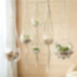 hanging macrame vases