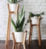 various plant stands 20.jpg