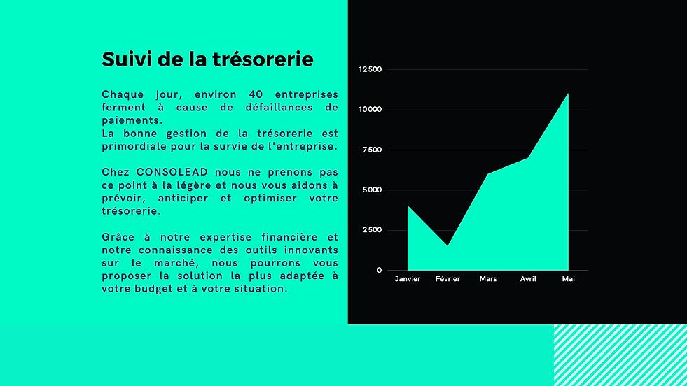 Optimisation Tréso Canva.png