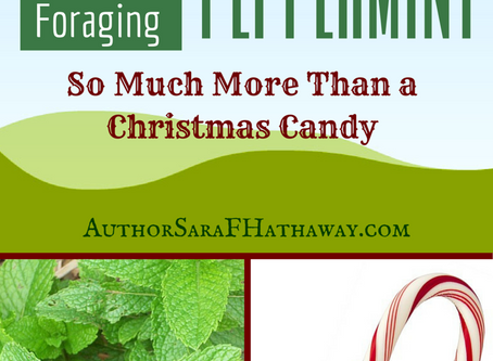 Peppermint, Not Just a Christmas Candy