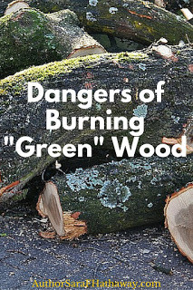 "The Dangers of Burning ""Green"" Wood"